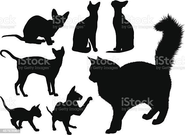 Cats silouettes set vector id457928967?b=1&k=6&m=457928967&s=612x612&h=occbao4as5 xvatvkooboflbuwbdfowqqzapryioxfa=