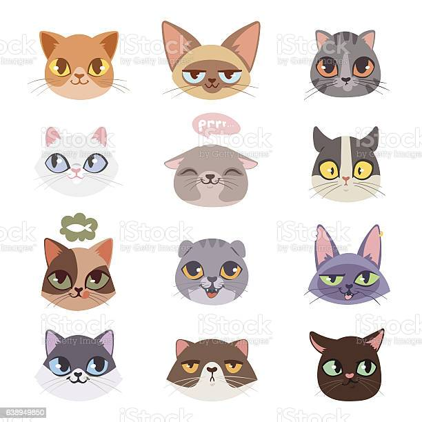Cats vector heads illustration vector id638949850?b=1&k=6&m=638949850&s=612x612&h=vwrnjho fe6zagtcpsp9wquzgwi2rstgp6pxo9mw18u=