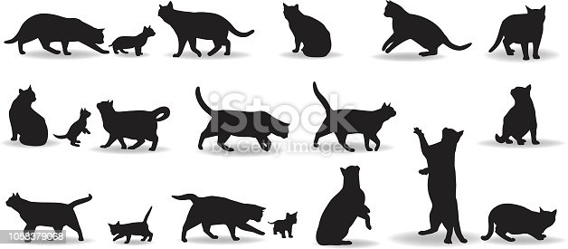 Domestic Cat silhouette