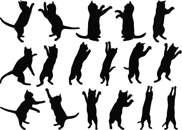 猫 ベクターアートイラスト