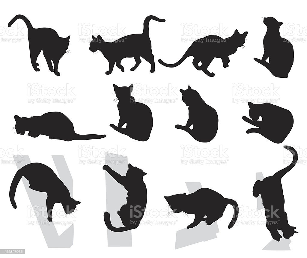 Cats royalty-free cats stock vector art & more images of animal