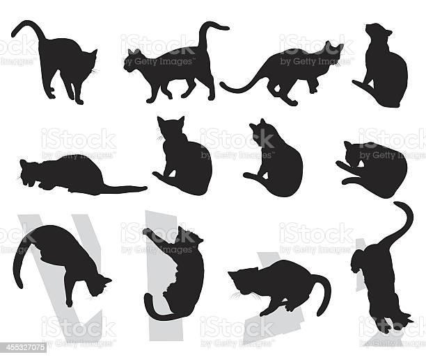 Cats vector id455327075?b=1&k=6&m=455327075&s=612x612&h=onqo2l3dezeqecccjxbiadnxselg0v2xzfrwy3wqza0=