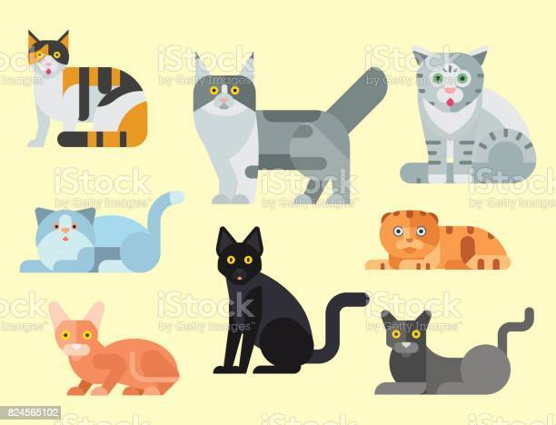 Cats vector illustration cute animal funny decorative kitty feline vector id824565102?b=1&k=6&m=824565102&s=612x612&h=xw2uerobr09vbtzyte2dwr6zrh0arm3zr52o6zfr7wc=