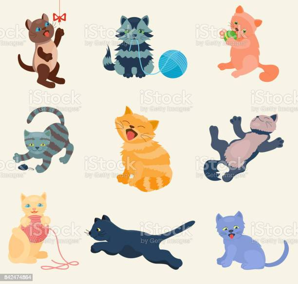 Cats vector set collection different cats kitty kitten play in pose vector id842474864?b=1&k=6&m=842474864&s=612x612&h=vcvye2snbxoxoeqalog 5hp813s3h79egr7sd2rxhoi=