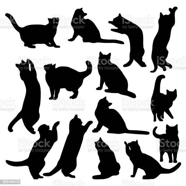 Cats set vector id928489416?b=1&k=6&m=928489416&s=612x612&h=ykrtemcfswmevlkfyeyayzpdqujg0zyvi6i92srruii=