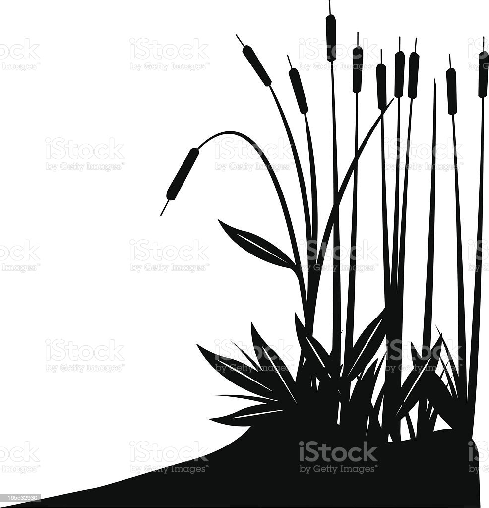 cattail stock vector art   more images of black color cattail clipart pinterest cattails clipart free