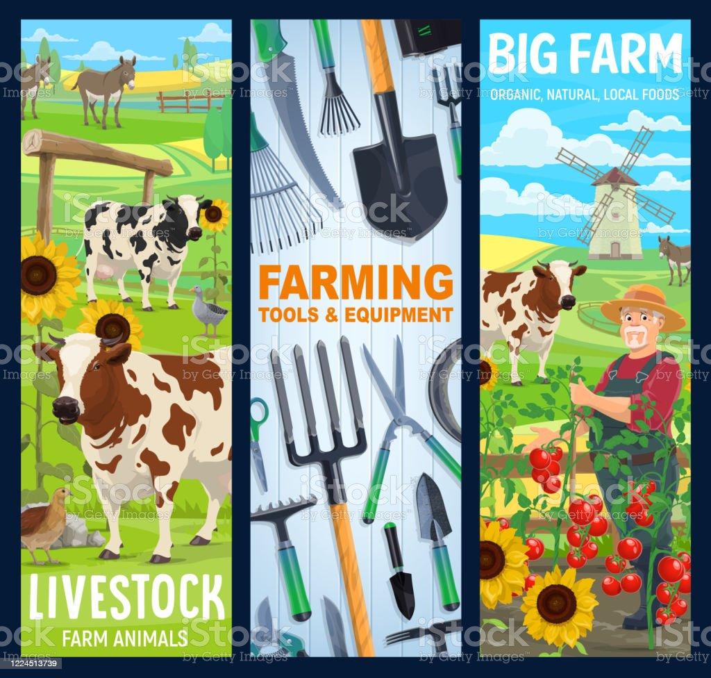 Cattle Farm Animals Farmer Gardening Tools Banner Stock Illustration Download Image Now Istock