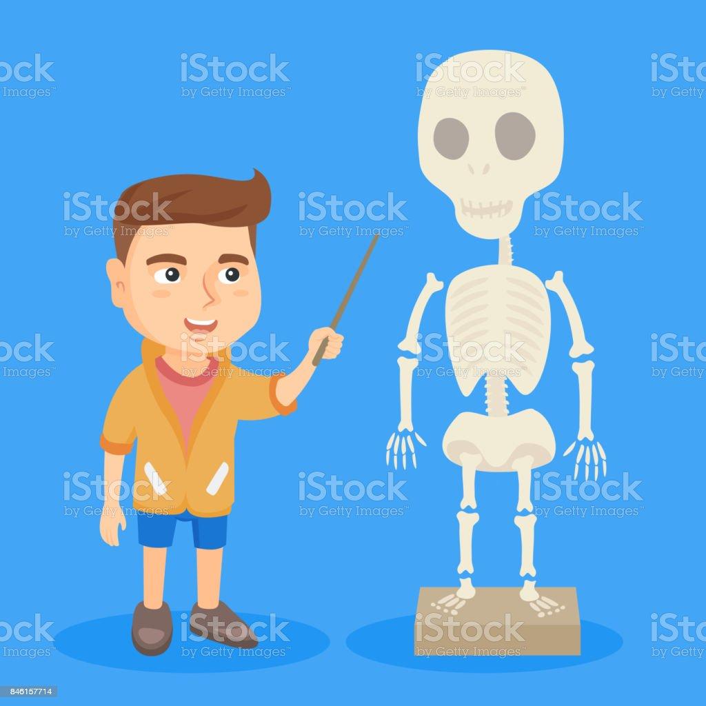 Kaukasische Schüler Studieren Das Menschliche Skelett Stock Vektor ...