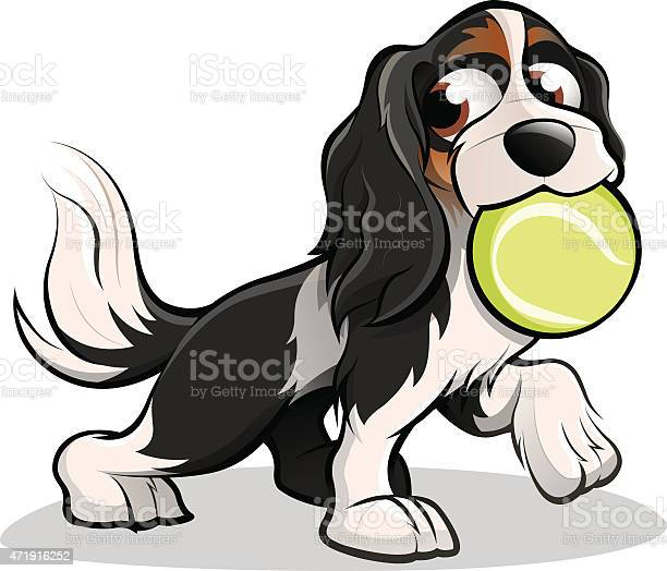 Cavalier king charles spaniel dog with tennis ball in mouth vector id471916252?b=1&k=6&m=471916252&s=612x612&h=os59wprnfvxups gevso1ztdchvsx poseata12fffm=