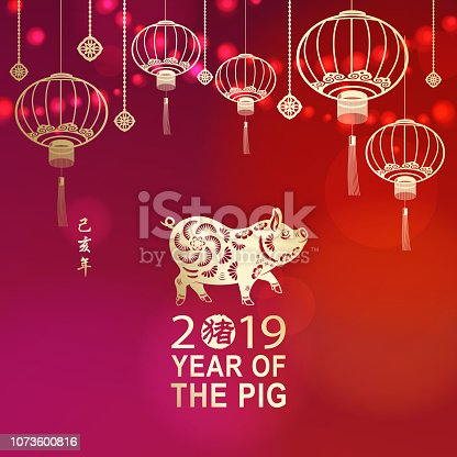 To Celebrate Chinese New Year with gold colored pig paper art for the Year of the Pig 2019 on lanterns and lights background, the vertical Chinese phrase means Year of the Pig