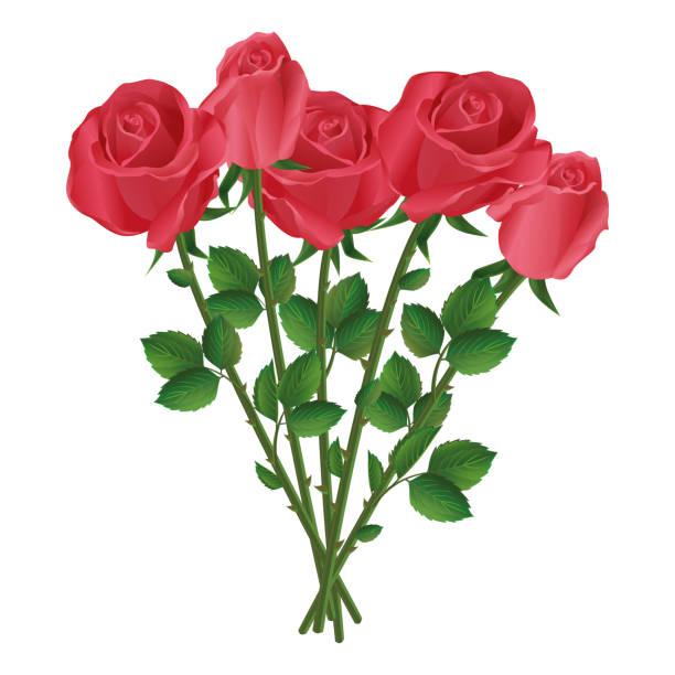 バラの花束 イラスト素材 Istock