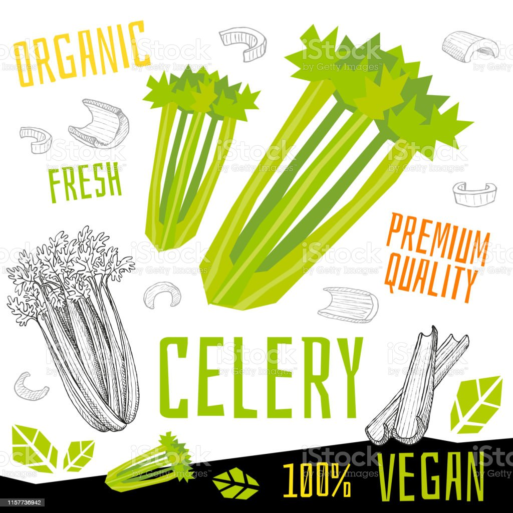 Celery icon label fresh organic vegetable, vegetables nuts herbs...