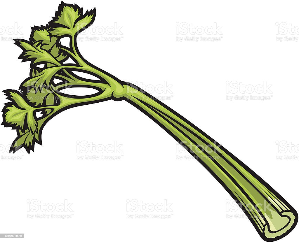 celery stick stock vector art more images of celery 136501876 istock rh istockphoto com celery clipart black and white celery clipart