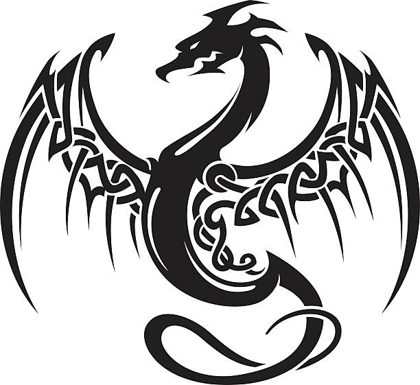 illustrations, cliparts, dessins animés et icônes de celtic dragon insigne - tatouages dragons