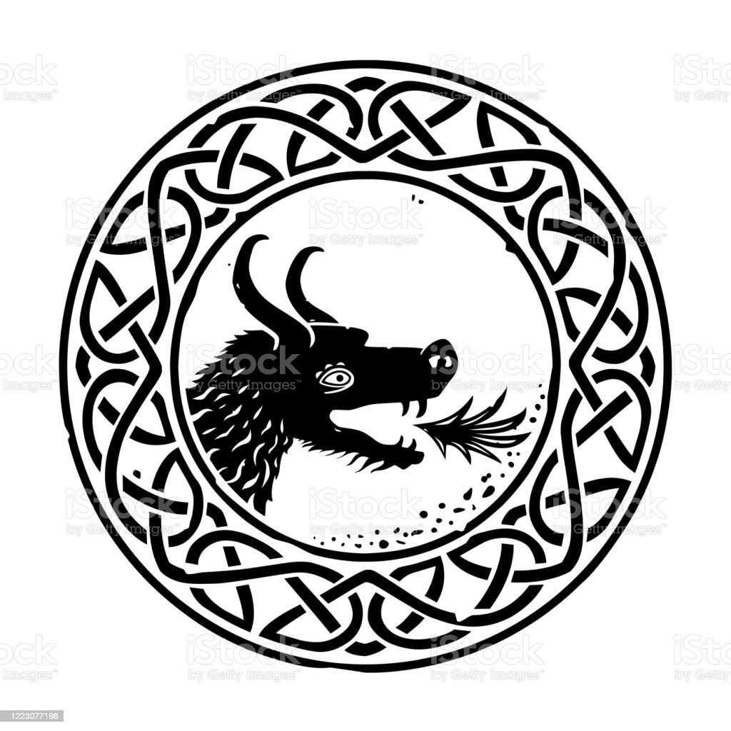 Celtic Knot Ring With Dragon Head Stock Illustration Download Image Now Istock