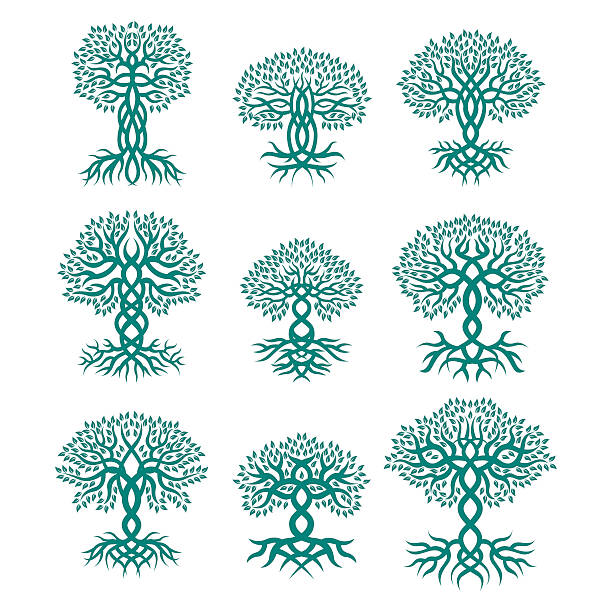 Celtic tree logos Celtic tree vector logos celtic style stock illustrations