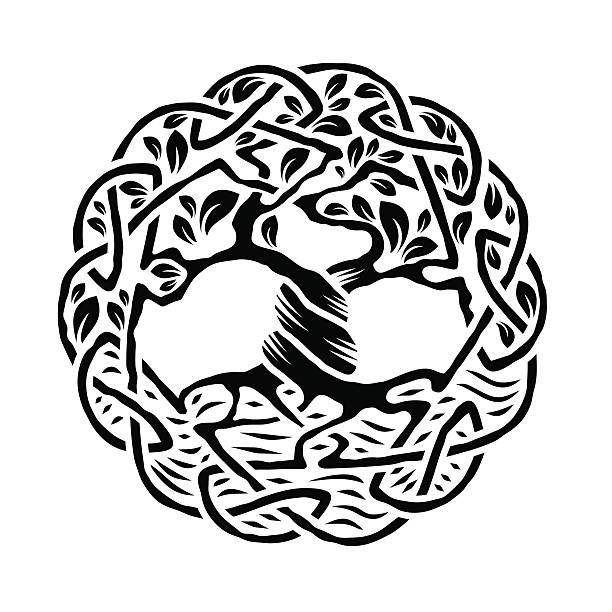 Celtic Tree of Life Illustration of celtic tree of life,  black and white version, vector illustration celtic style stock illustrations