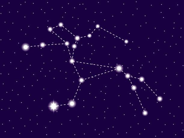 bildbanksillustrationer, clip art samt tecknat material och ikoner med centaurus konstellation. starry natthimmel. stjärntecken. kluster av stjärnor och galaxer. djupa rymden. vektor illustration - centaurus