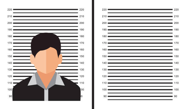 centimeter scale for photography, vector design centimeter scale for photography, vector design mug shot stock illustrations