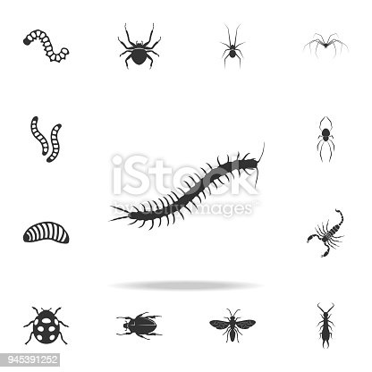 centipede. Detailed set of insects items icons. Premium quality graphic design. One of the collection icons for websites, web design, mobile app on white background