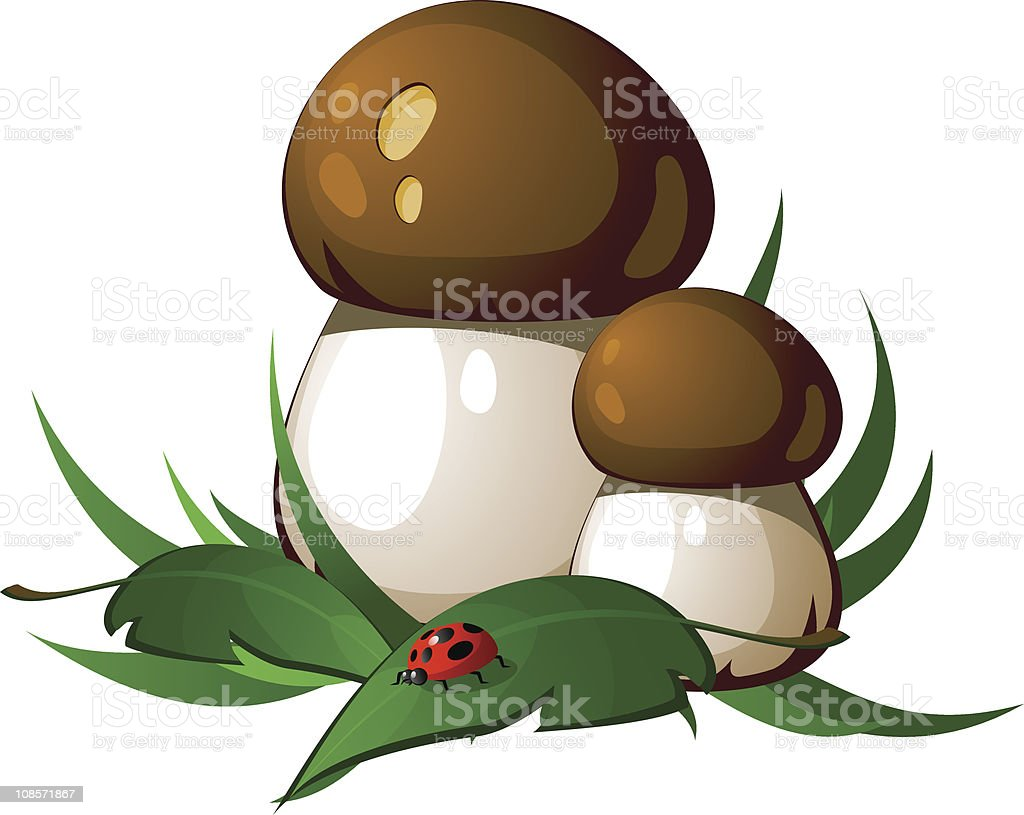 Ceps royalty-free stock vector art