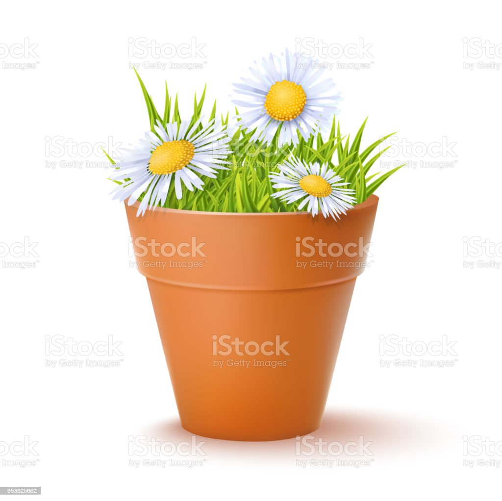 Ceramic Flower Pot Stock Vector Art More Images Of Agriculture