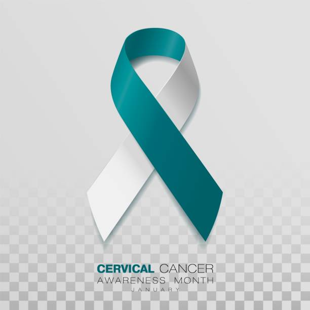 Cervical Cancer Awareness Month. Teal And White Ribbon Isolated On Transparent Background. Vector Design Template For Poster. Illustration. Cervical Cancer Awareness Month. Teal And White Ribbon Isolated On Transparent Background. Vector Design Template For Poster. january stock illustrations