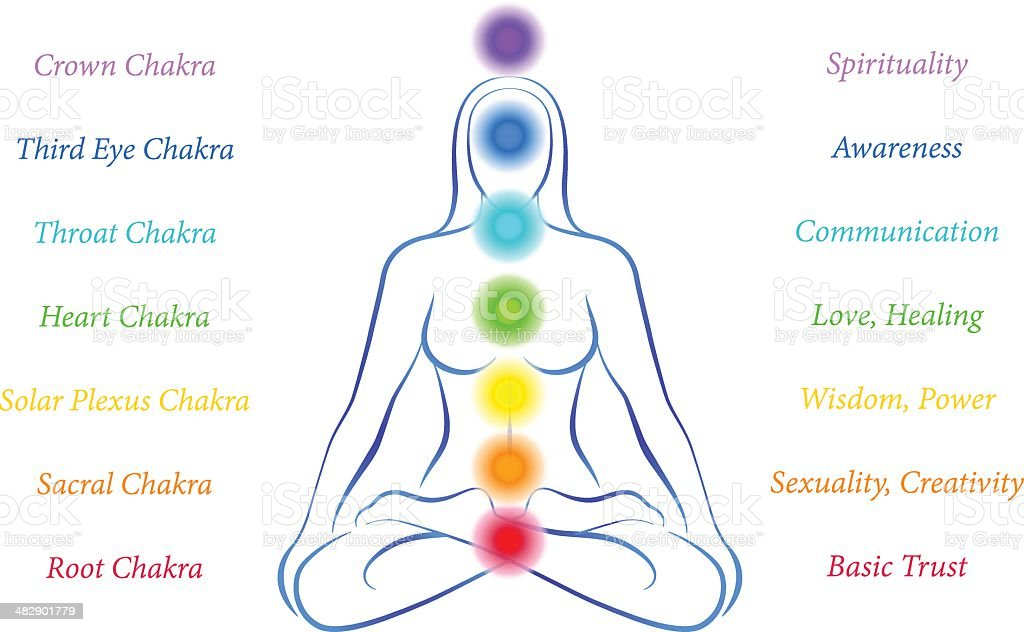 Chakras Woman with Description vector art illustration
