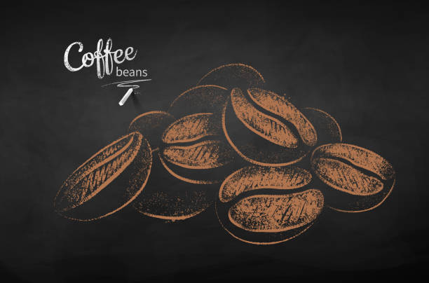 Chalk drawn sketch of pile of coffee beans Vector chalk drawn sketch of pile of coffee beans on chalkboard background. coffee crop stock illustrations