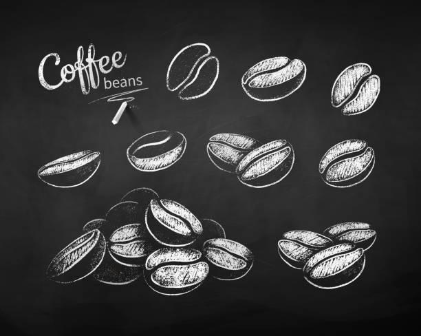 chalk drawn sketches set of coffee beans - ziarno kawy palonej stock illustrations