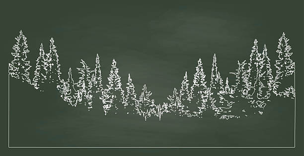 Chalkboard Forest A chalk outline vector silhouette illustration of a forest tree line with pine trees that slopes down to the center. treelined stock illustrations