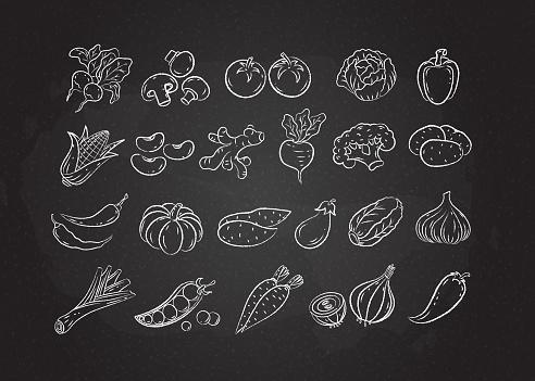 Chalked white line sketch vegetable icon set