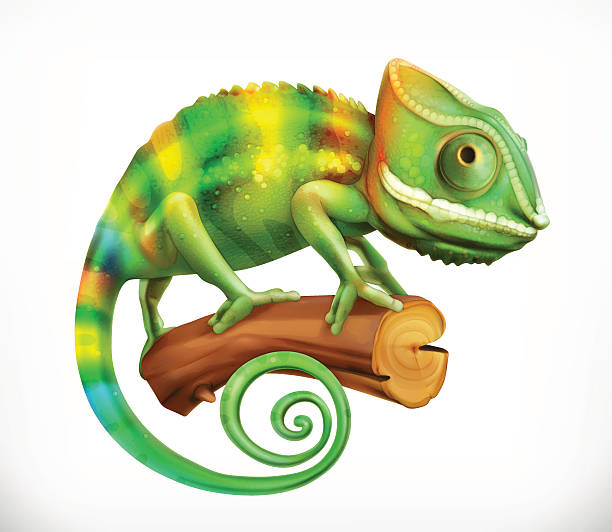 chameleon. 3d vector icon - reptiles stock illustrations