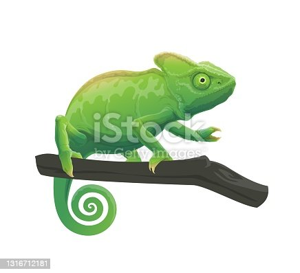 istock Chameleon cartoon animal on tree branch 1316712181