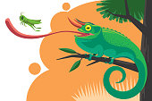 vector illustration of jackson's chameleon catching grasshopper