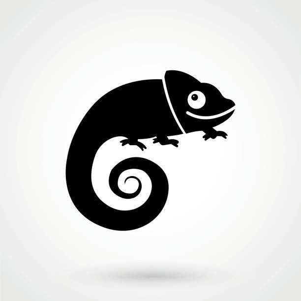 chameleon icon - chameleon stock illustrations