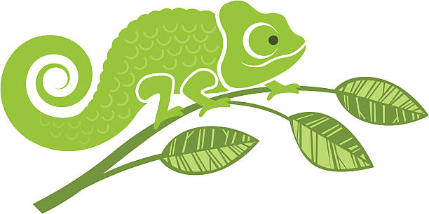 chameleon illustration - chameleon stock illustrations