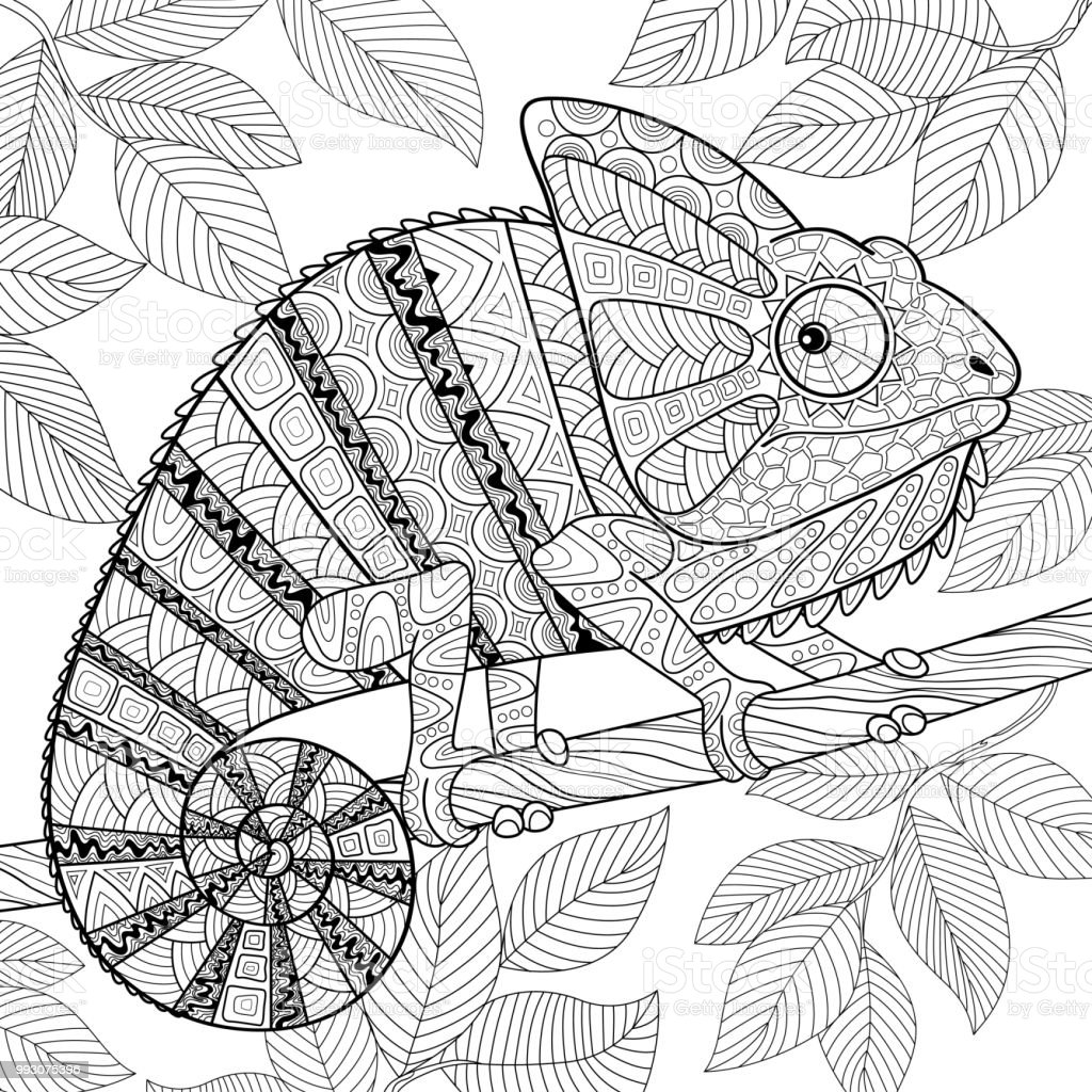Chameleon In Zentangle Style Adult Antistress Coloring Page Black And White Hand Drawn Doodle