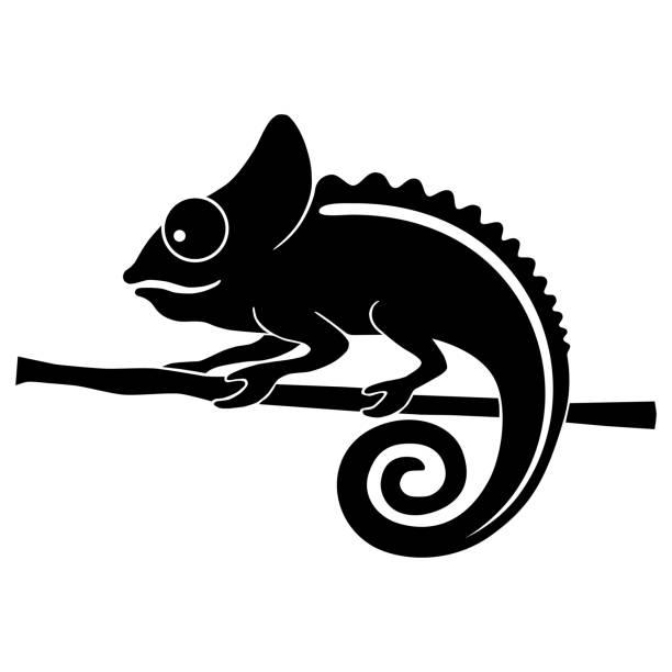 Chameleon Icon chameleon. Flat symbol chameleon. Isolated black sign chameleon on white background. Vector Illustration chameleon stock illustrations