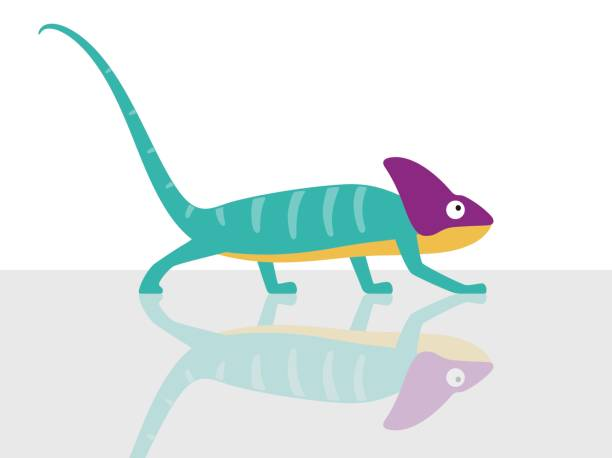 chameleon walking in glass background, vector illustration - chameleon stock illustrations