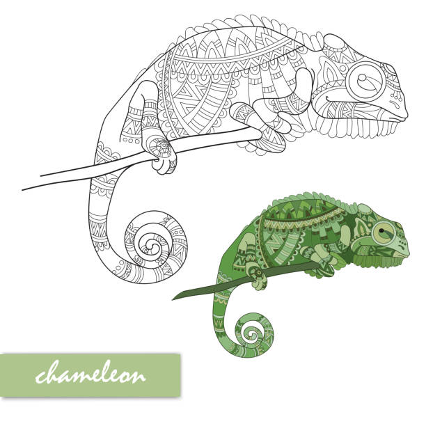 Jackson Chameleon Tattoos: Top 60 Chameleon Clip Art, Vector Graphics And