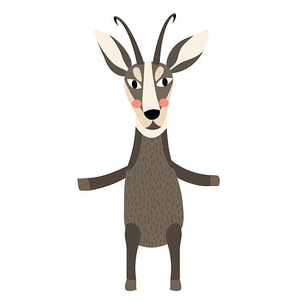 chamois standing on two legs animal cartoon character vector illustration. - bergziegen stock-grafiken, -clipart, -cartoons und -symbole