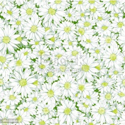 istock Chamomile seamless pattern. 98459464