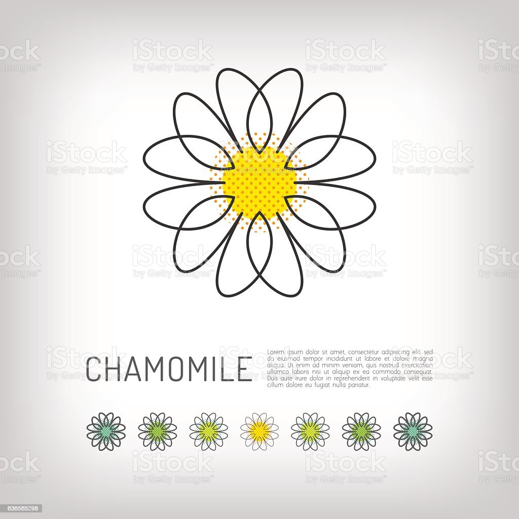 Chamomile thin line art icon, isolated daisy logo, abstract design vector art illustration
