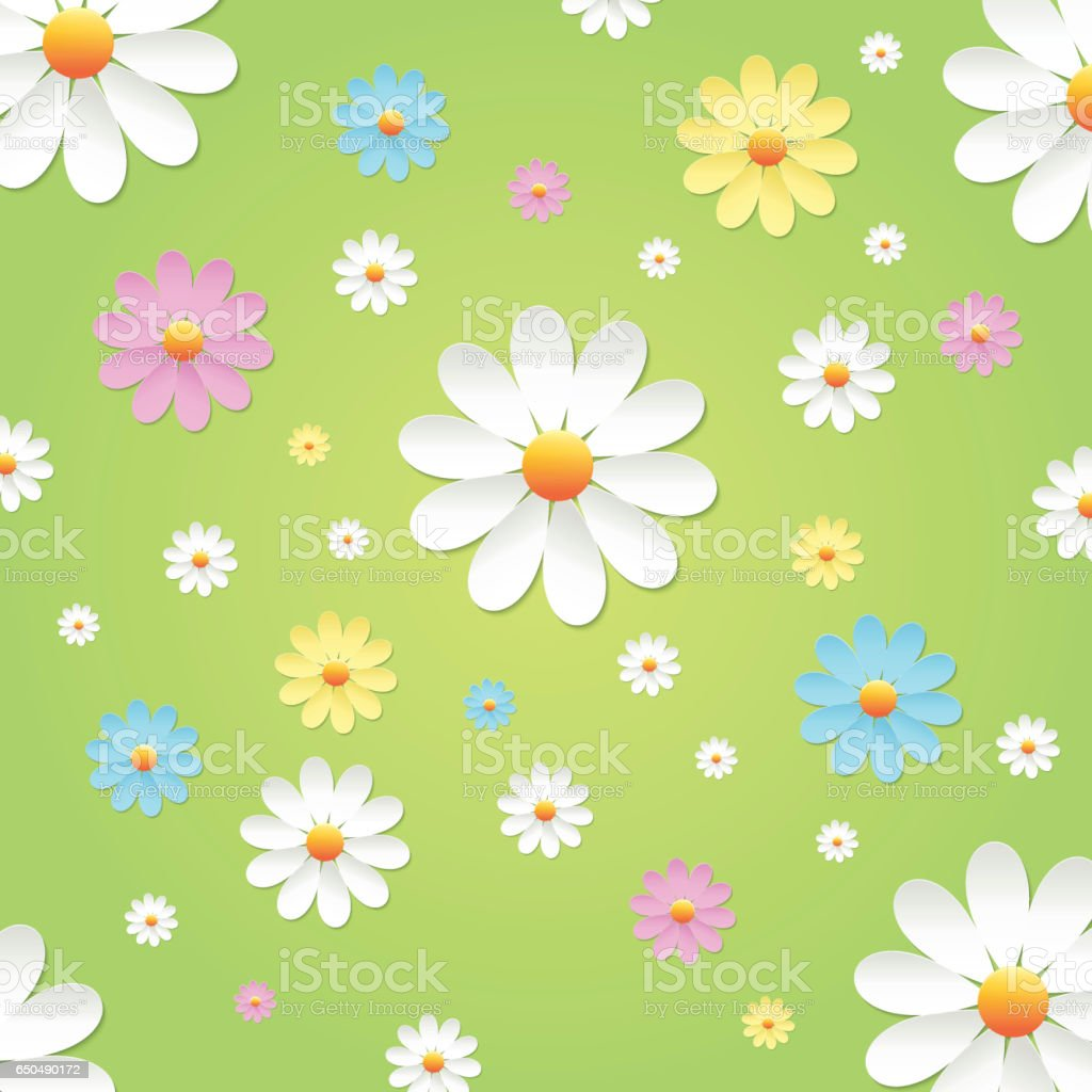 Chamomile vector art illustration