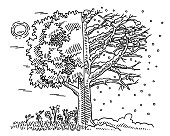 Hand-drawn vector drawing of a Change Of Seasons Concept, a Tree in Summer and in Winter. Black-and-White sketch on a transparent background (.eps-file). Included files are EPS (v10) and Hi-Res JPG.