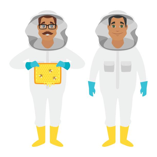 characters Vector cartoon style beekeeper man characters. Isolated on white background. beekeeper stock illustrations