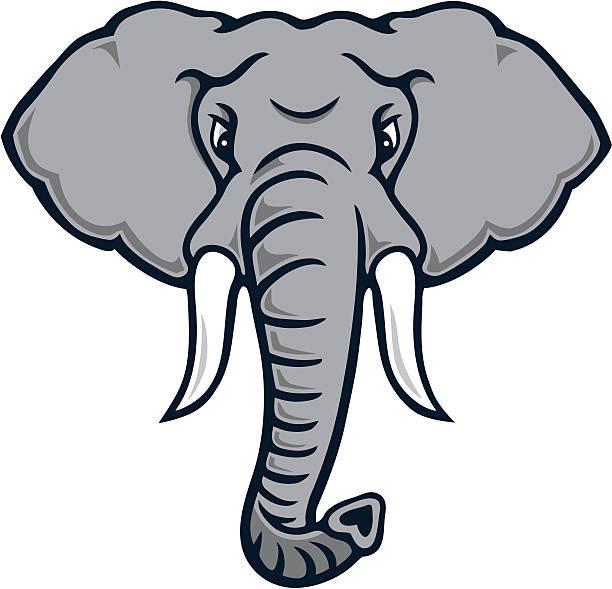 Top 60 Elephant Trunk Clip Art, Vector Graphics and ...