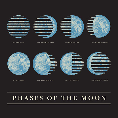 Chart of the Moon's Lunar Phases