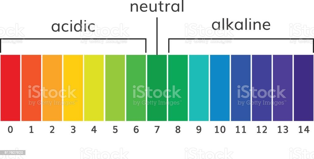 Chart ph alkaline and acidic scale vector vector art illustration